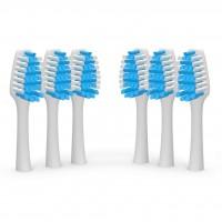 Toothbrush Heads (x6)